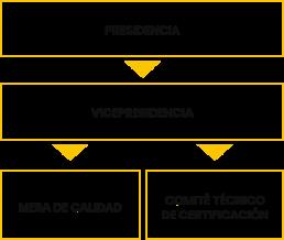 estructuras gobierno